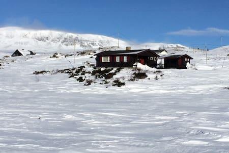Cabin Ustaoset, Norwegian Mountains - Ustaoset