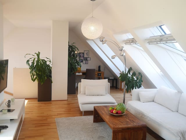 2 story roof-top apartment near Main Train Station