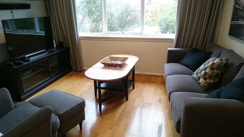 Cosy 2-bedroom inner-city unit, free parking/WiFi