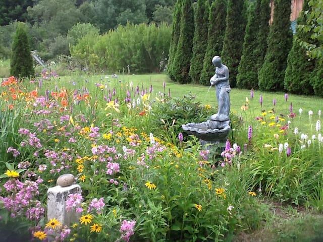 Garden next to pool