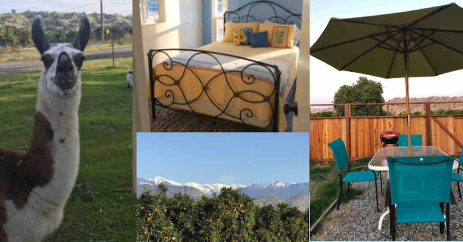 Cute Country living near Sequoia National Park!