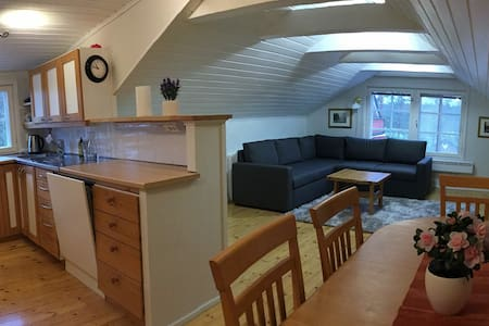 Cosy Loft apartment, close to town and nature.