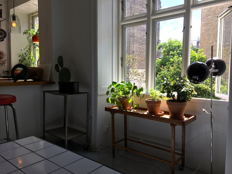 The kitchen/living room