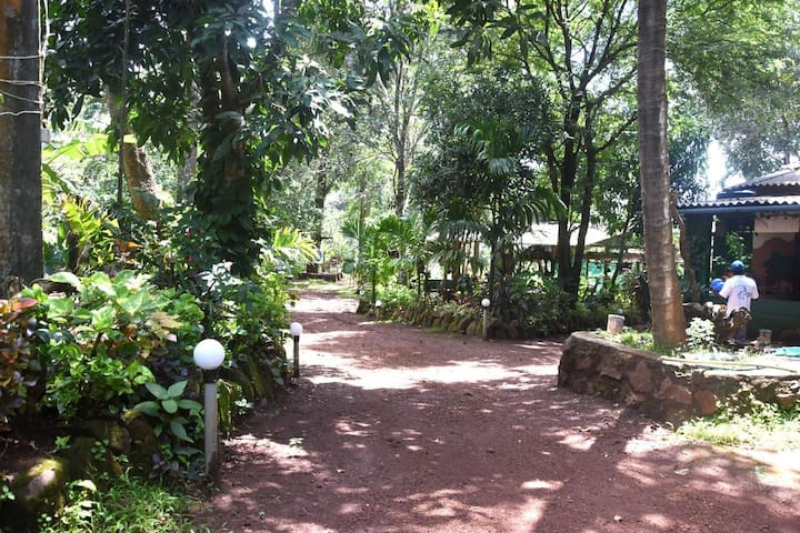 Home stay where in u find a homely food in forest