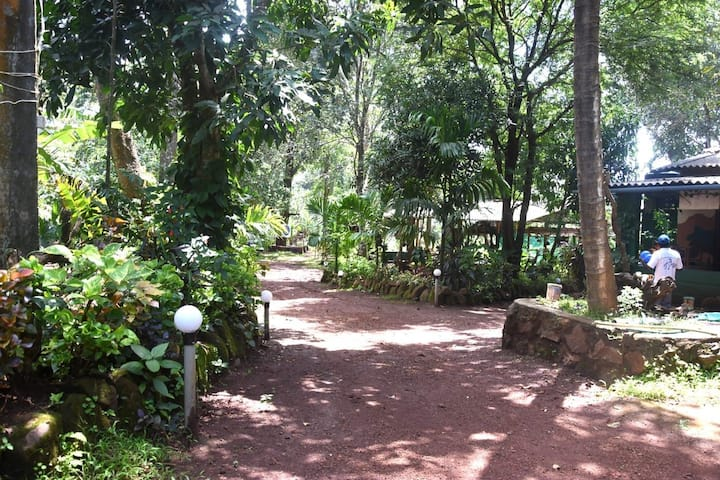 HOME STAY ,A home food in forest (TARIFF PER HEAD)