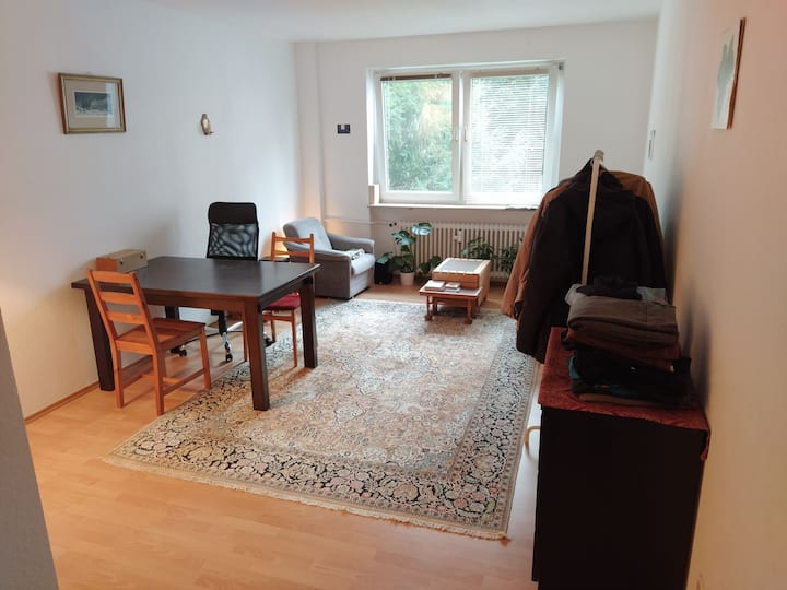 Quiet cozy flat in the area of Ostend. Next to EZB