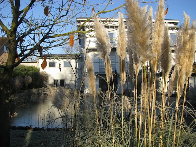 Helle, moderne, großzügige Wohnung in Polch - Polch - Lejlighed