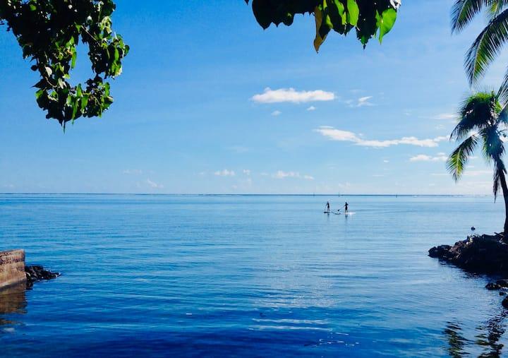 TAHITI Paea. Coconut Paradise.