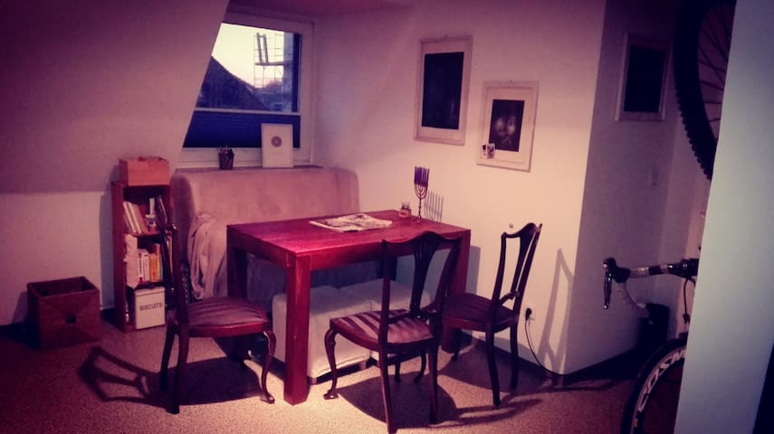 Cosy and calm flat near downtown - Münster - Apartmen
