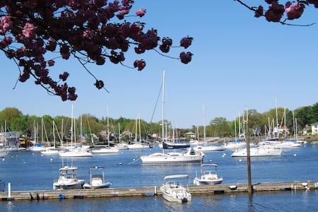 Water front property/ swimming pool - Mamaroneck