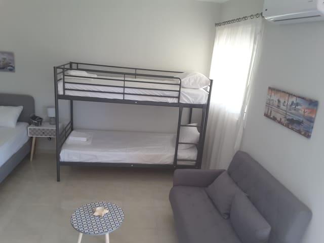 Luxurious  apartment foinikas