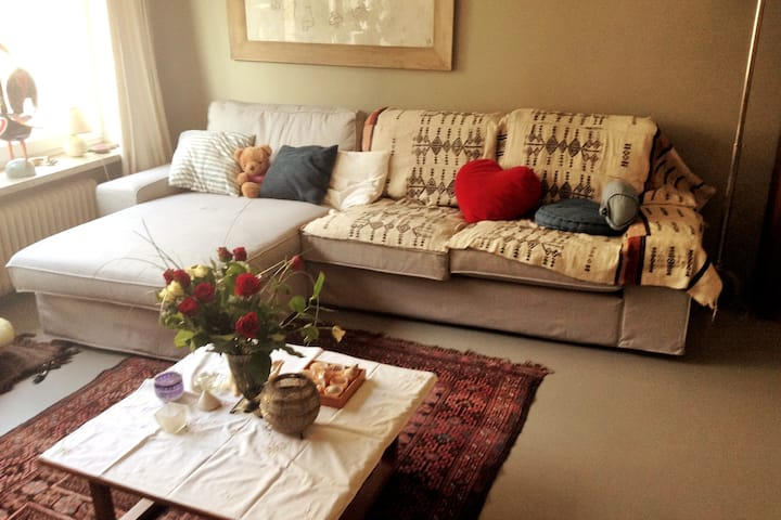 warm and cosy 2 bedroom appartment central Gent