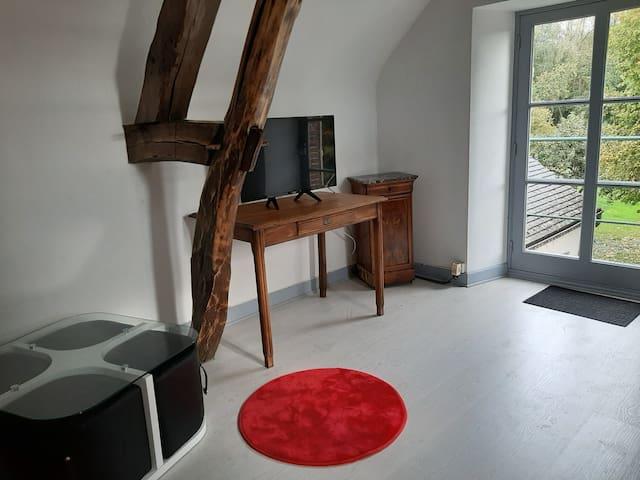 Studio option salon