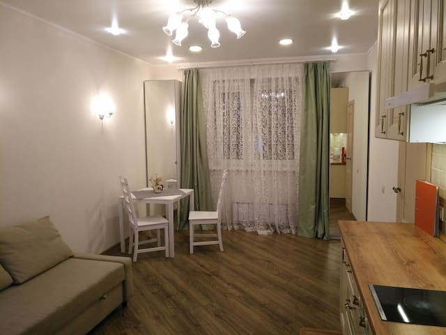 Nicely designed 2 room apartment
