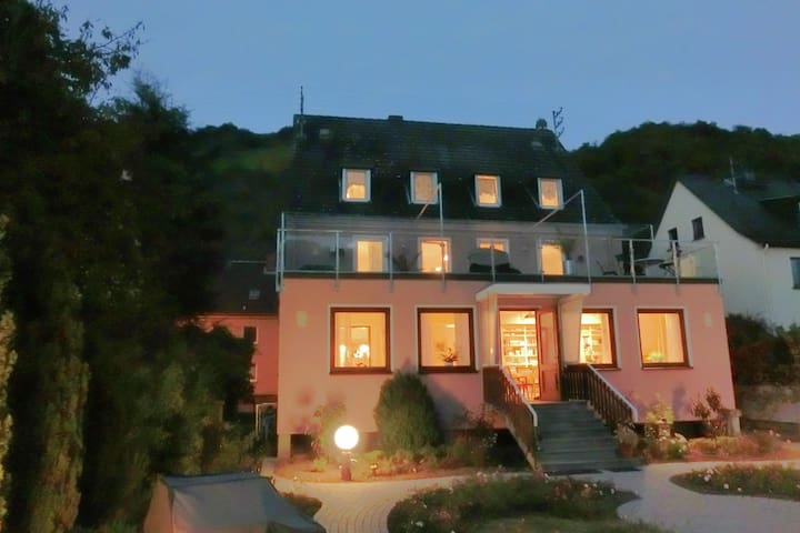 Amazing holiday home directly on the Rhine with roof terrace and a large garden