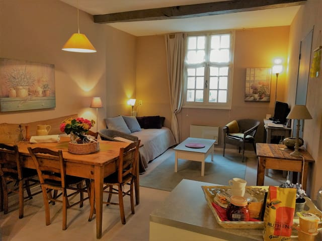 Appartement indépendant calme  centre historique