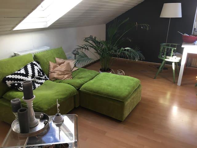 Gemütlichste Dachgeschosswohnung - Grünwald - Leilighet