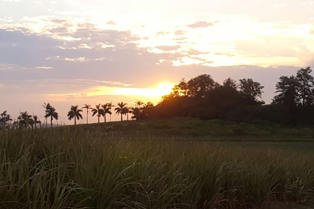 View from the road at sunset