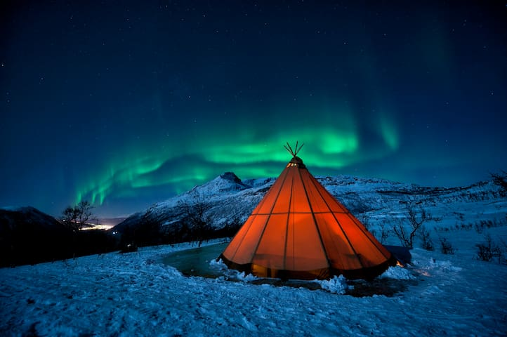 We will gladly help you in connecting  with Njalasouka Adventures for some  magical northern lights hunting in the Narvik area between the 3rd of Dec and 22nd of March. Pickup is 40 meters from the apartment. Booking at the latest 10 am the same day