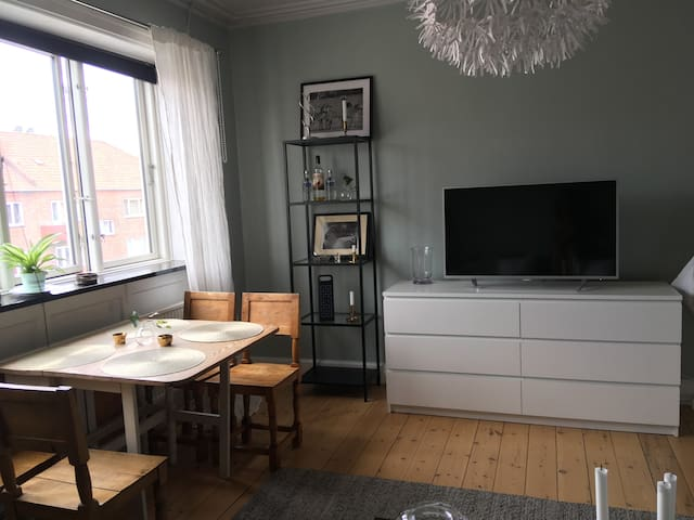 Beautiful and cozy apartment in Copenhagen!
