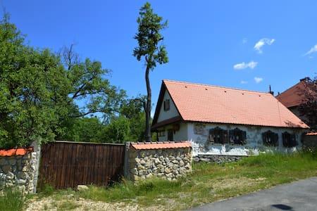 Stone and Wood House of Maramures, Transylvania