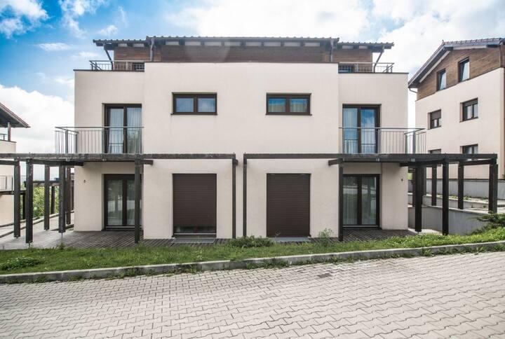 Deluxe Apartment - ApartHotel Ficusului - 1B