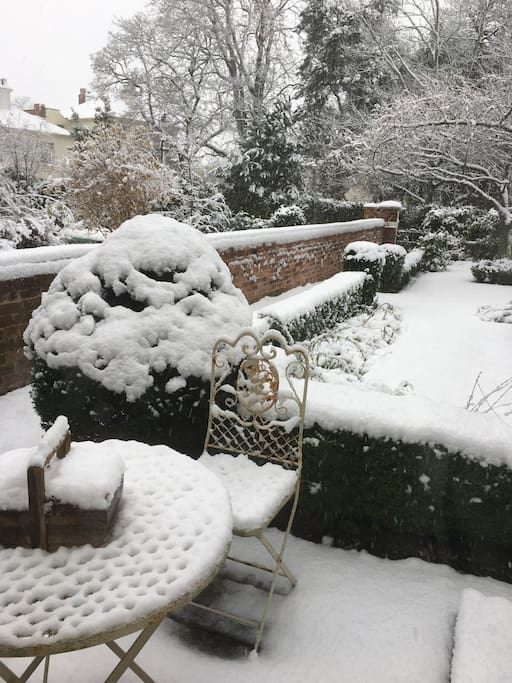 The front garden in the winter