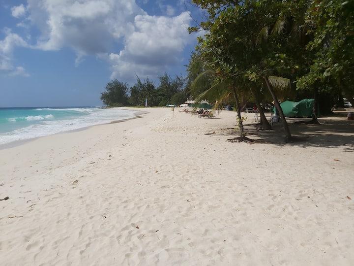 Ocean View Beach Apartment #1