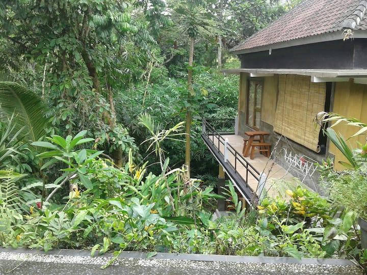 gaufando jungle gardens