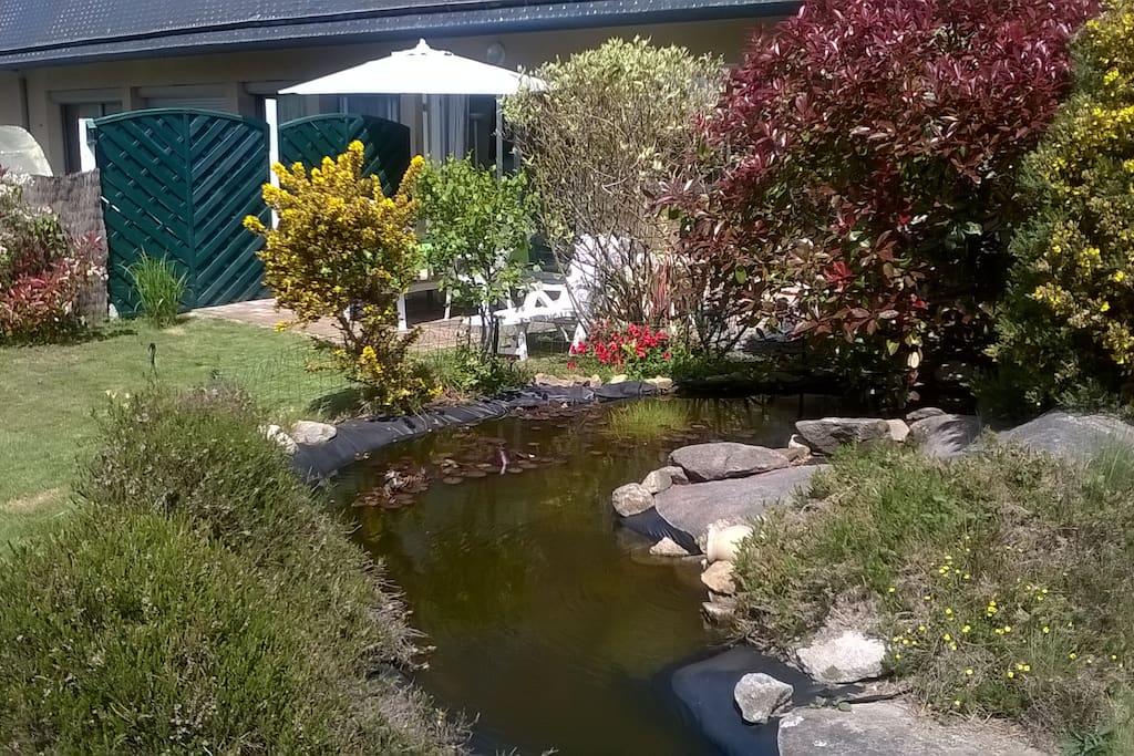Bassin ornemental dans joli jardin