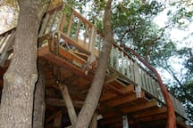 You'll feel like you're in a treehouse in the Mushroom, only it has easy access.