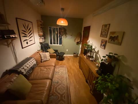 Private, single family Oakland home, great light