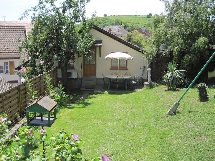 Gite du florimont***/4 p .maison.ind. clim.Colmar