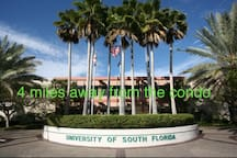 Waterfront*Busch Gardens* University Hospital*USF