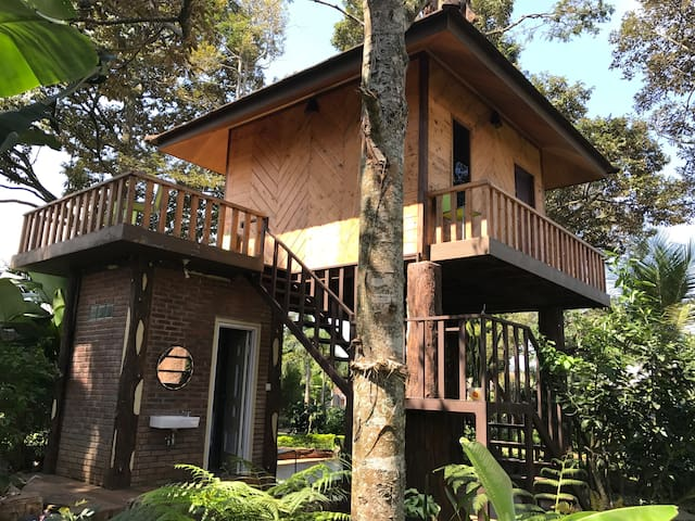 Tree House for your family