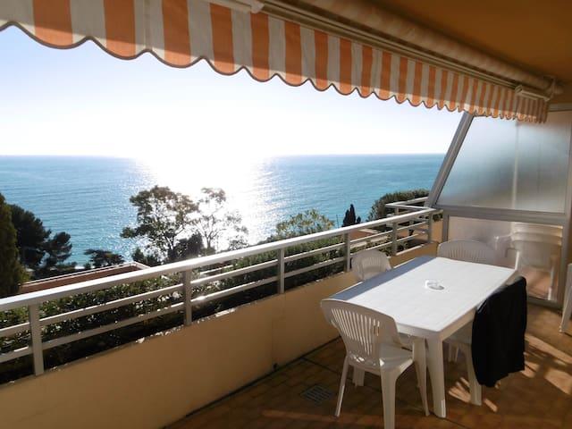 Appt 37m2+20m2 terrasse vue mer proche Monaco