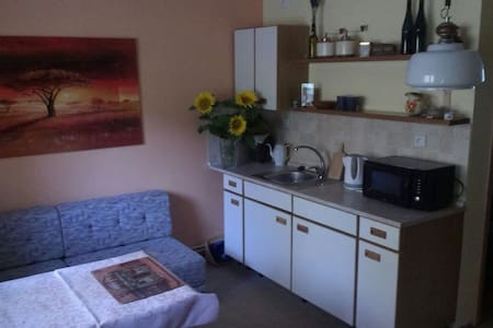 One bedroom apt in a family house - Bukovice