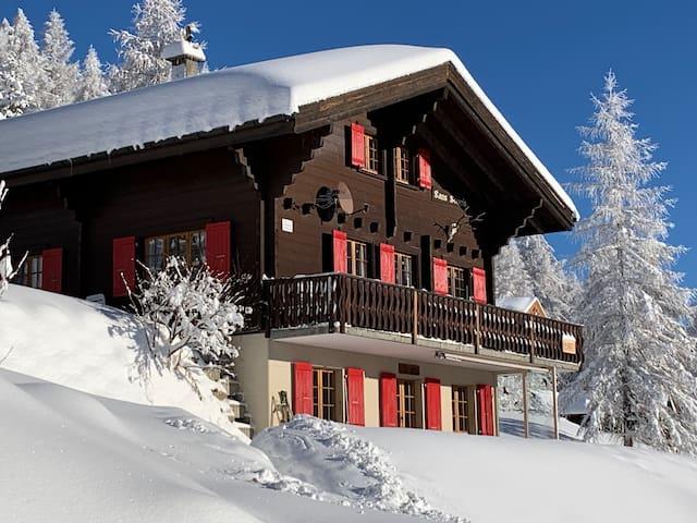Direkt an Skipiste/Wanderweg 1700m Bellwald/Wallis