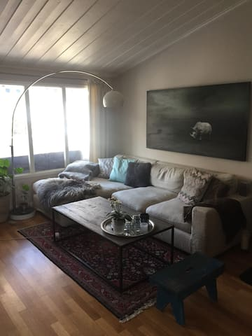 Cozy house with lots of sun 20 min from Oslo. - Bærum - Таунхаус