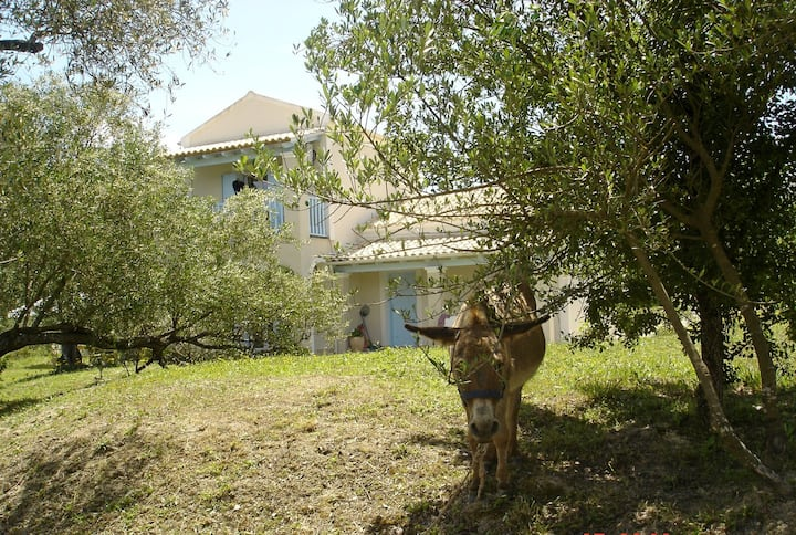 Bio-Agriturismo Farm - Orchidee cottage for 5