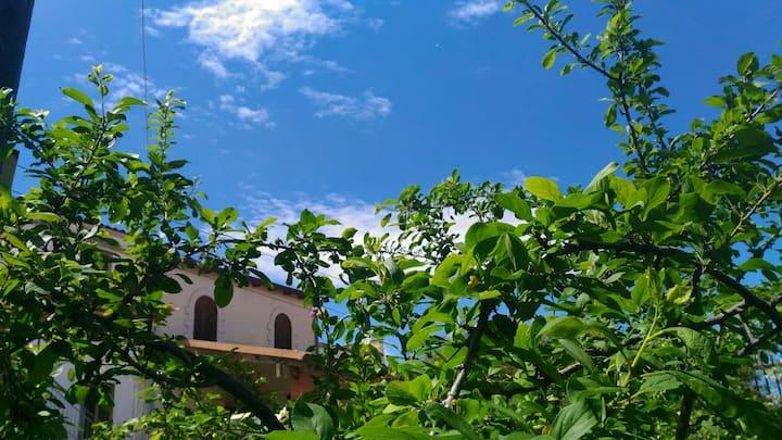 The Jasmine Home Holiday, Alcamo