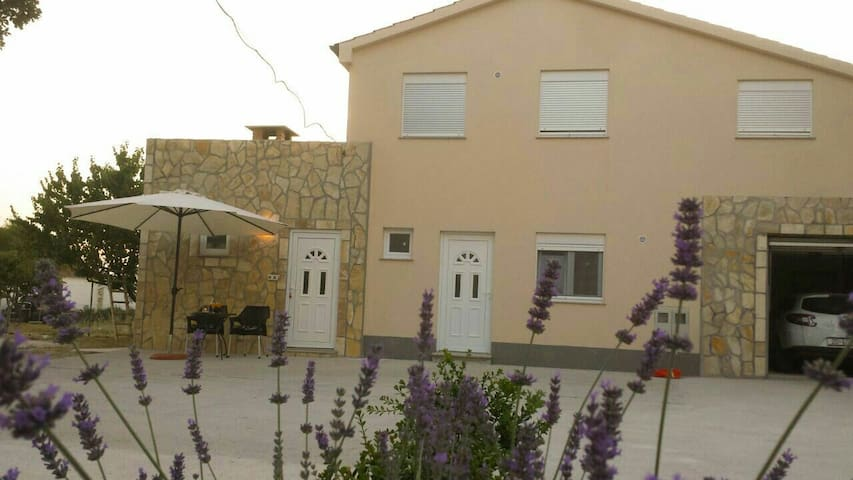 country studio apartment Latinka