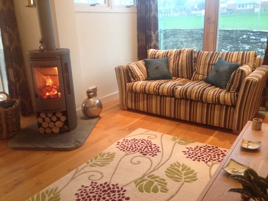 Living room: Swedish log stove; large fabric sofa; large leather sofa (not pictured); area rug; wooden cabinet.