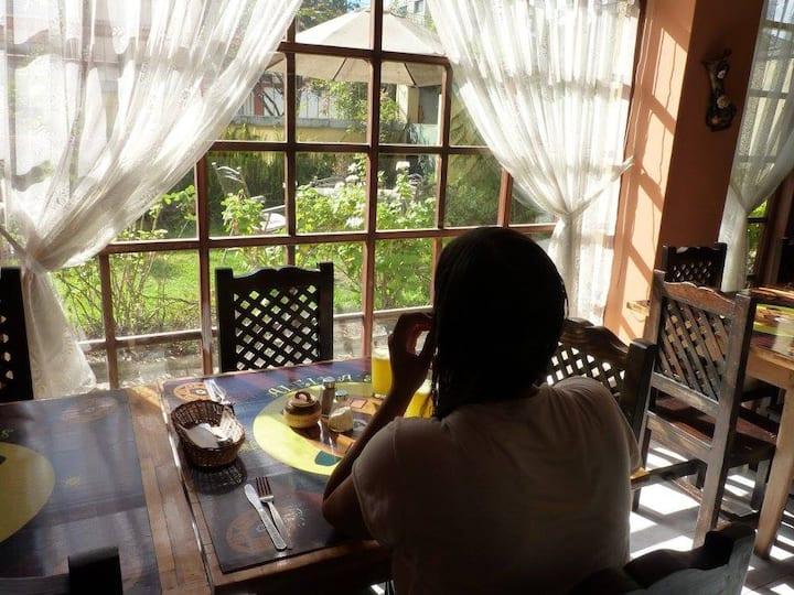 Single Room -Aleidas Hostel - La Floresta