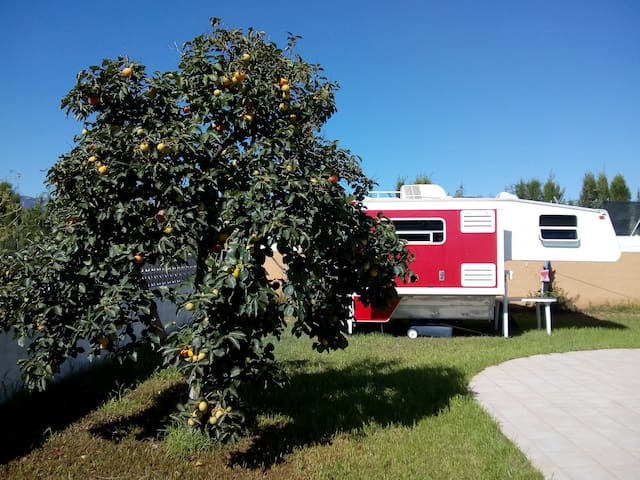 Spend time in our camper in the 'campo'