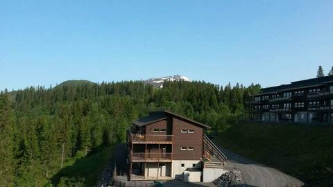 Åre Björnen ski in ski out delat boende