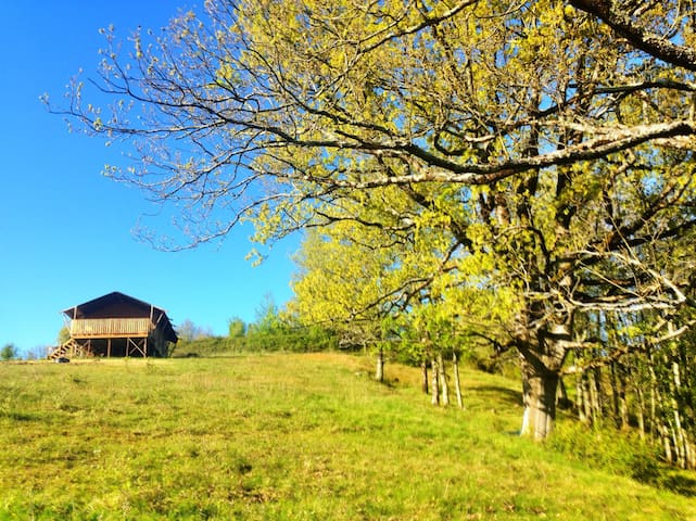 Truly unwind with Wildflower Meadow Glamping - Montberaud - Tenda