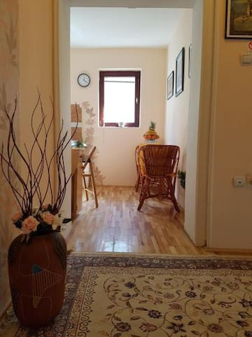Apartman Lausev Fully Equipped 1 Bedroom Apartment