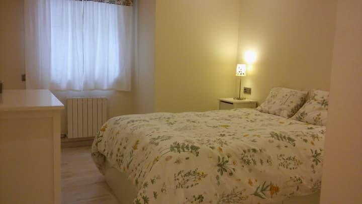 Apartamento Plaza Peregrina. VUT-PO-003908