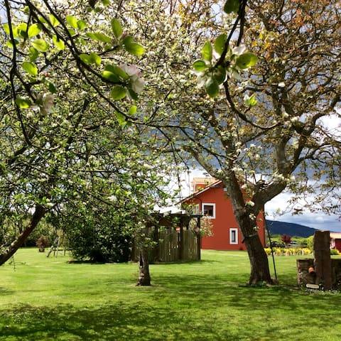 Un lugar para el descanso en Asturias